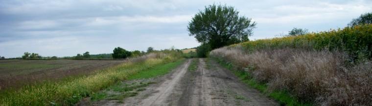 cropped-road2.jpg
