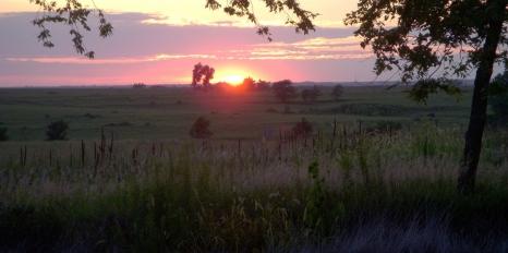 prairie night 2 (1280x638)